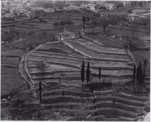 Η-Βάλτα-Καρυά-1958-κοιτάξτε-από-πλάγια-001