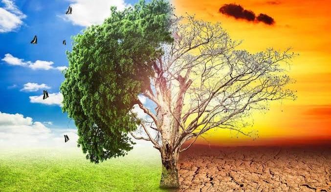 Μητροπόλη Λευκάδος και Ιθάκης:Διημερίδα για το Περιβάλλον με αφορμήτη Γιορτή των Αγίων ΤριώνΙεραρχών